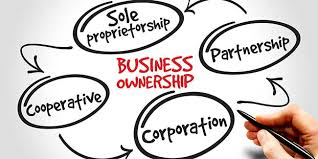 Business Ownership Types A Primer On Choice Of Business Entity Jaburg Wilk
