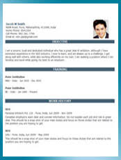 ... Resume Template Preview
