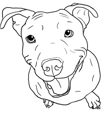 Small Picture Pitbull Coloring Pages Alric Coloring Pages