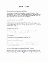 Sample Resume Writing Format Elegant Elegant Professional Resume