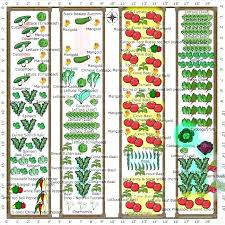 planning a vegetable garden layout vegetable garden plot planner garden plot planner garden plan vegetable garden planning a vegetable garden
