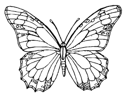 Small Picture Monarch Butterfly Coloring Page Coloring BookADULT COLORING