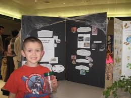 best science project images science fair  spider science fair project