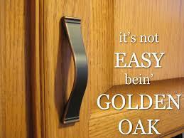 best hardware for oak cabinets decorating ideas
