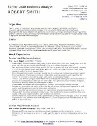 Objective Statement For Business Analyst Resume System Of A Resumes
