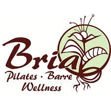 Pilates studio business plan