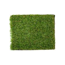 carpet grass. https://ke.jumia.is/sv3zyeznbukyiz9tvzuyemkojwm\u003d/fit-in carpet grass r