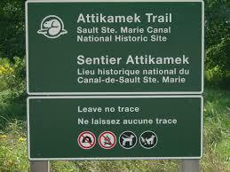 Leave No Trace Wikipedia