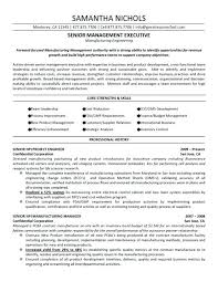 Sample Resume For Process Engineer Chemical Process Engineer Resume Sample Pdf Engineering Resumes