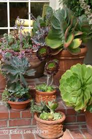 Fall Container Gardening Ideas Container Garden Ideas For Front Porch