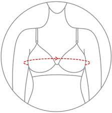 Angelform Bra Size Chart Blossom Online Shopping For Women And Kids Inner Wear