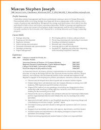 8 Summary Statement Examples How To Make A Cv