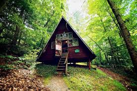 a frame tiny house in the woods