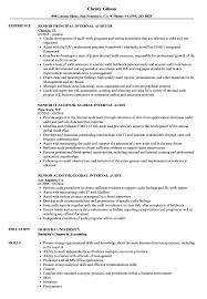 Senior Auditor Internal Resume Samples Velvet Jobs