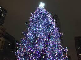 christmas tree lighting chicago. Grayslake Family\u0027s Spruce Wins Chicago Christmas Tree Contest Lighting