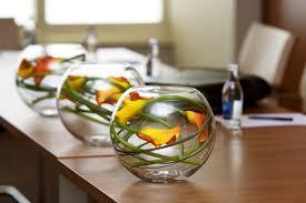 office flower arrangements. Fish Bowl Flower Arrangement For Meeting Room In Dublin Office Arrangements E