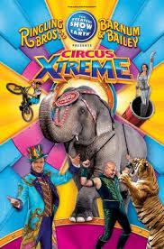 Circus In Nashville San Diego Behind The Wheel Training