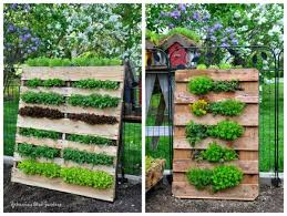 Small Picture Adorable Design DIY Vertical Garden Ideas with Brown Pallet