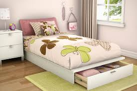 Modern twin bed Minimalist 18 Inspiration Gallery From How To Decorate Modern Twin Bed Amazoncom How To Decorate Modern Twin Bed Raindance Bed Designs