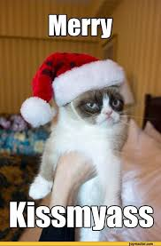 Memes Vault Cat Christmas Jokes via Relatably.com