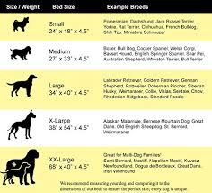 Rat Terrier Size Chart Pet Bed Size Chart Best Picture Of Chart Anyimage Org