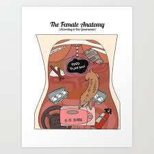 Womens Anatomy Chart Female Anatomy Chart According To Our Government Art Print By Findchaos