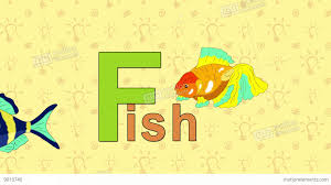me fish english zoo alphabet letter f hd a0647