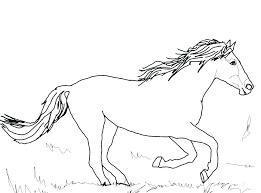 Horse Coloring Pics Dexyarya