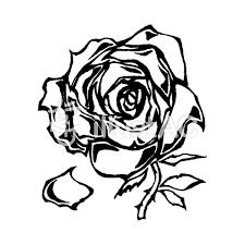 バラモノクロイラスト No 1246208無料イラストならイラストac