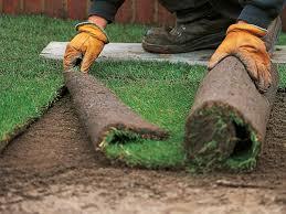 Diy Sod Laying A Sod Lawn Practical Advice Mybktouchcom
