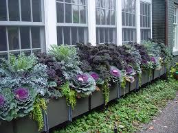 20 Fabulous Fall Container Garden Ideas  Garden Lovers ClubContainer Garden Ideas For Fall