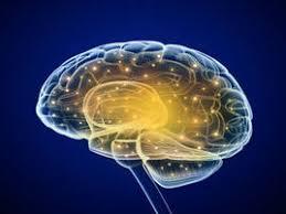「小脳性運動失調」の画像検索結果