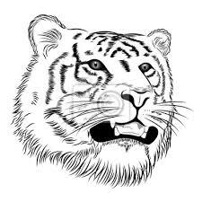 Nálepka Vektorové Tygr Zastoupeny V Podobě Tetování