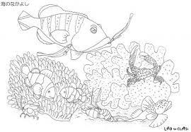 サンゴぬり絵 そのまま使える海洋学習の教材が満載全教材が閲覧