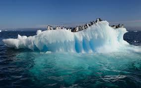 Resultado de imagen de Deshielo del Ártico.