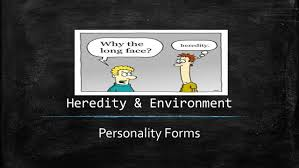 personality self esteem chapter 2 chapter 2 topics 6 heredity environment personality forms