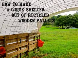 House Made From Pallets 441 Best Pallet Projects For Animals Images On Pinterest Pallet