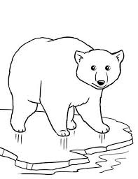 Small Picture Polar Bear on Thin Ice Coloring Page maovanky zvierata