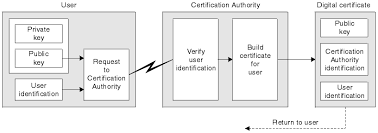 Digital Certificate Obtaining Personal Certificates From A Certificate Authority