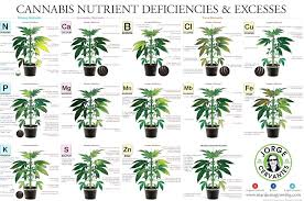 Cravings And Deficiencies Chart Nutrient Deficiency Chart Creativedotmedia Info