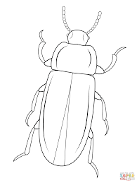 Small Picture Mealworm Beetle coloring page Free Printable Coloring Pages