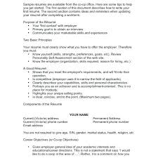 Amazing Resumes Mesmerizing How To Write An Amazing Resume Good Format Resume Template Example