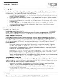 Account Resume Sample Executive Resume Formats And Examples Resume Sample Account Executive 20