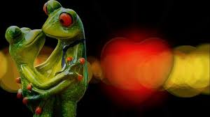 Parts Of A Frog Tired Of Attending Human Weddings Be A Part Of This Frog Wedding In