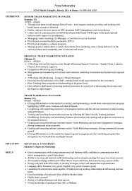 Trade Marketing Manager Resume Samples Velvet Jobs