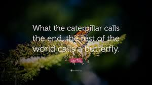 "Butterfly Quotes Awesome Lao Tzu Quote ""What The Caterpillar Calls The End The Rest Of The"
