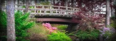 botanical gardens in arkansas university of arkansas botanical gardens garvan gardens