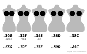 Bra Size Charts And Conversions Accurate Guide With Images