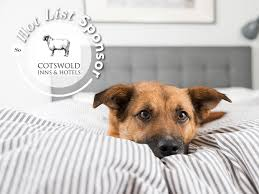 37 dog friendly hotels in gloucestershire and the cotswolds gloucestershire hotels soglos