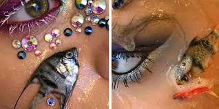 makeup artist uses dead fish as makeup 97 3fm brisbane s widest variety of from the 80s to now